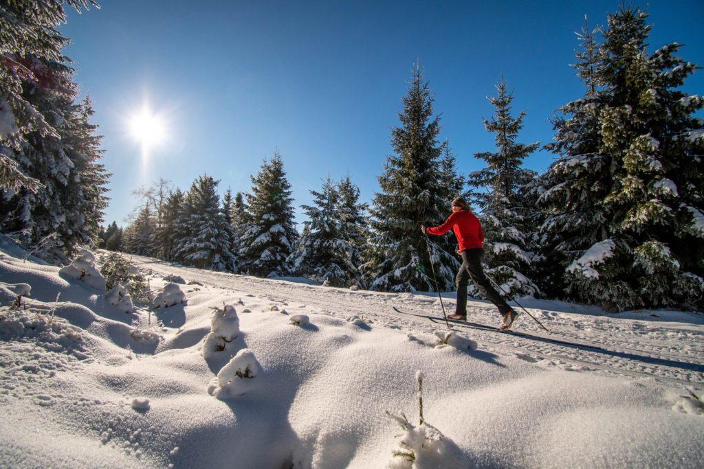 Eine Frau auf Langlauf-Skiern durch den Wald auf einer Loipe