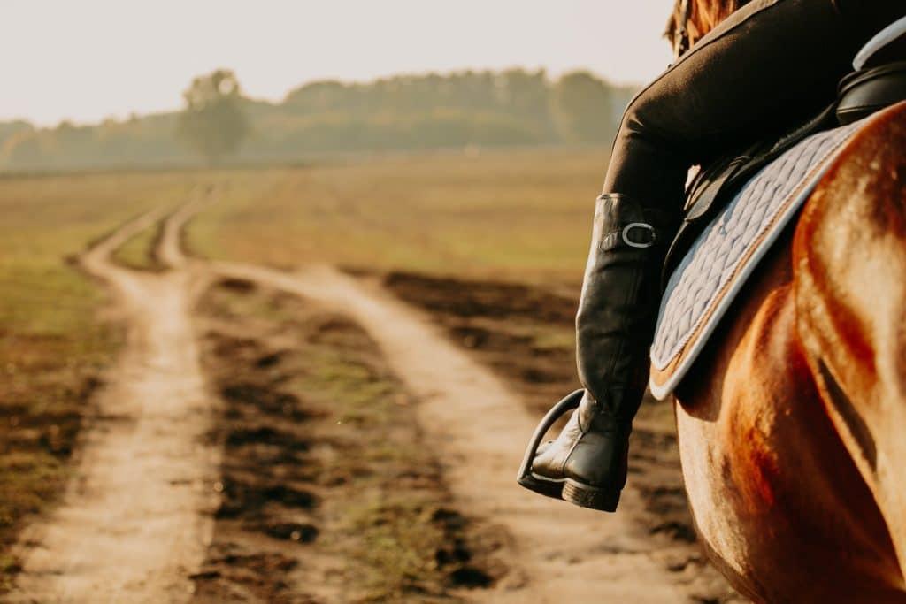 Frau sitzt auf einem Pferd und reitet auf einem Feldweg