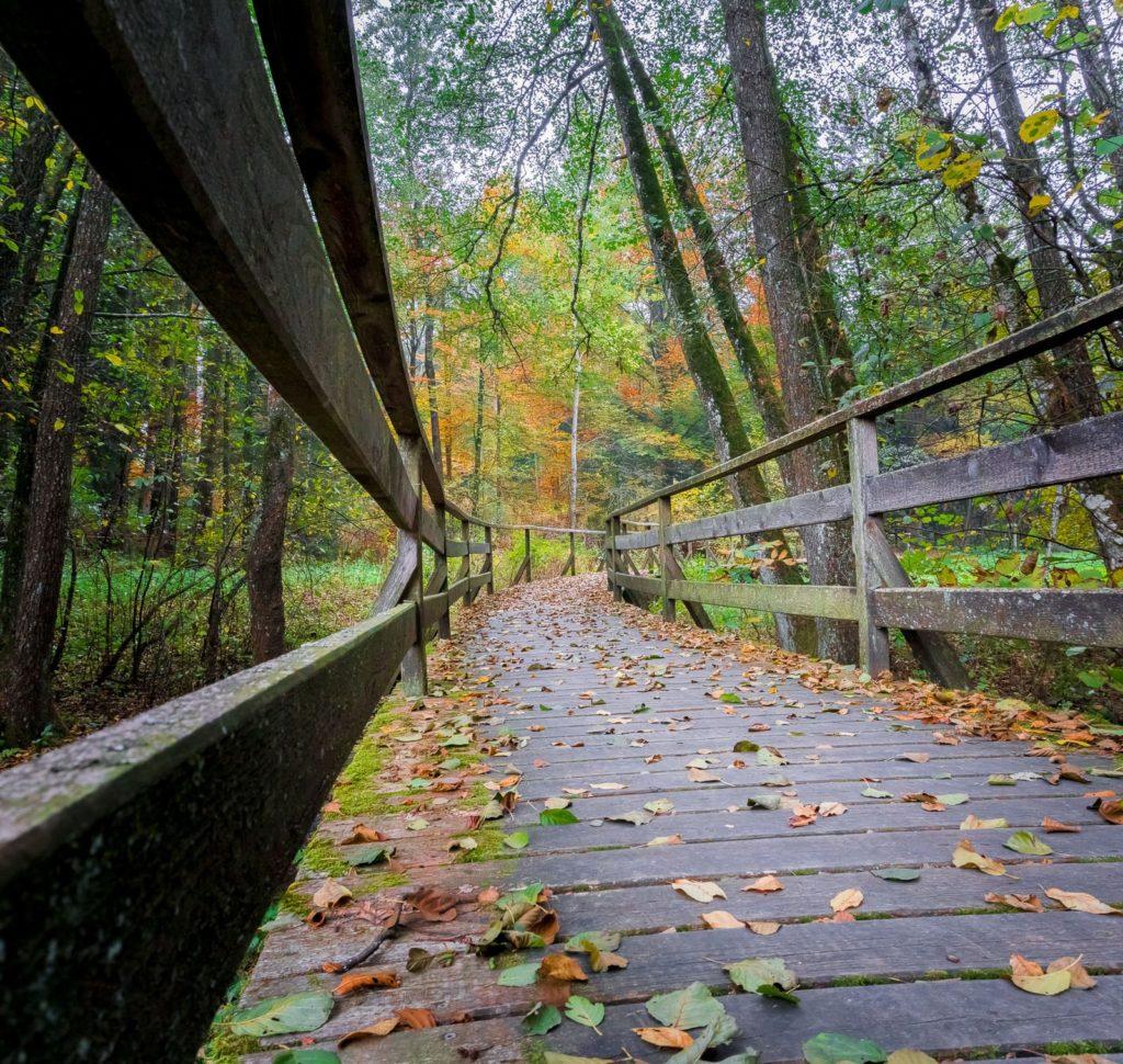 Brücke eines Wanderweges in Lalling