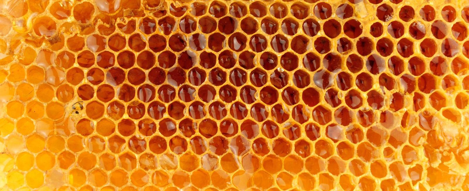 Gefüllte Honigwaben